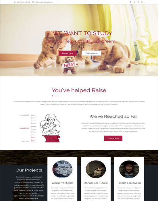 Rise - NGO and Charity Responsive WordPress Theme with page builder
