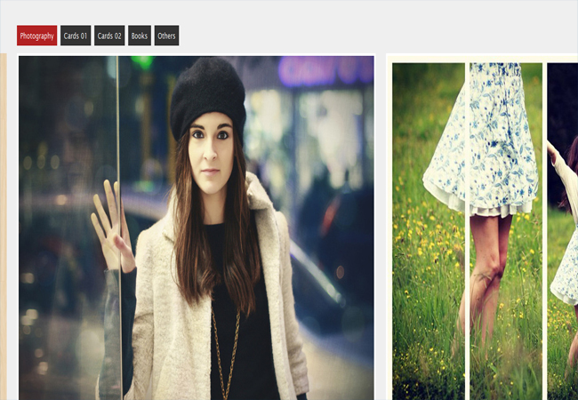 Multiple Scroll - jQuery Portfolio Gallery view Plugin
