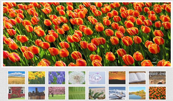 Amazing slider - jQuery Slider, jQuery Video Gallery, WordPress Slideshow