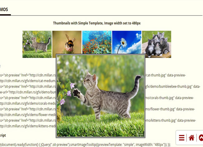 Smart Image - Tooltip Plugin with image thumbnail