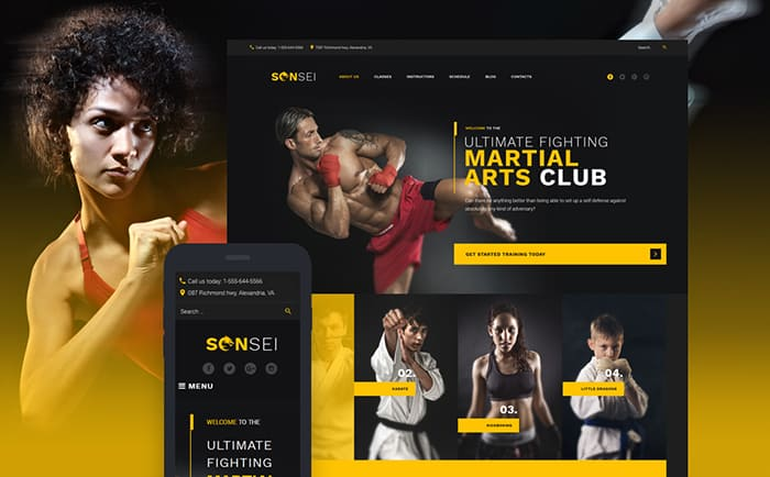 Sensei Club WordPress Theme