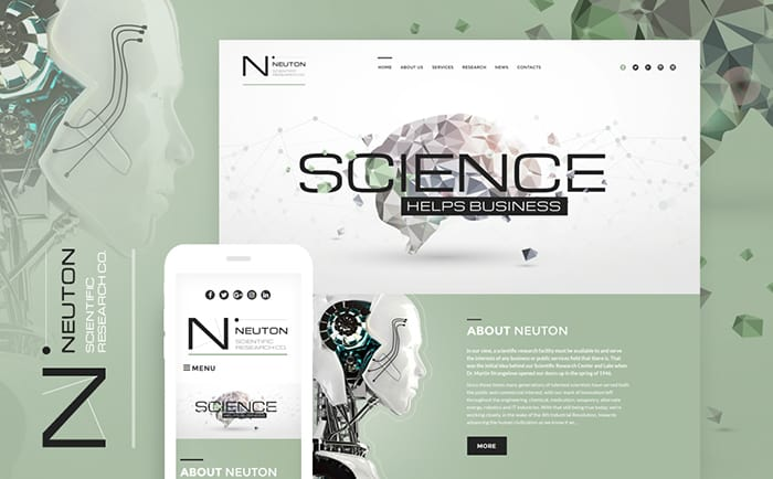 Neuton Responsive WordPress Theme