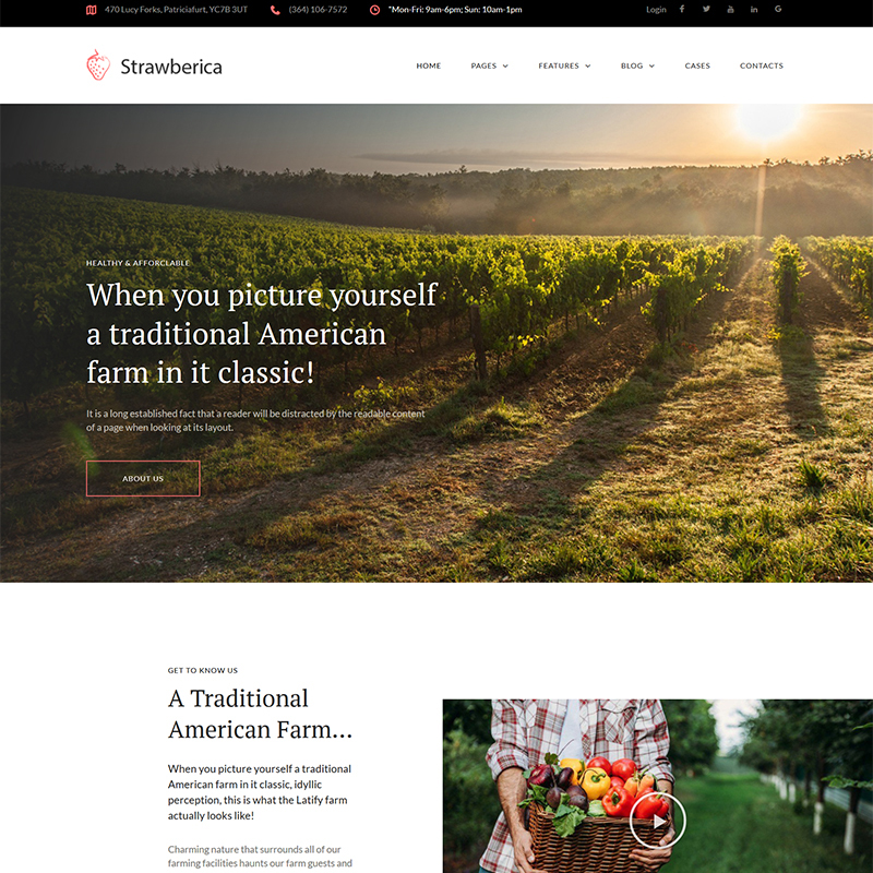 Strawberica - Vegan Farm Responsive WordPress Theme