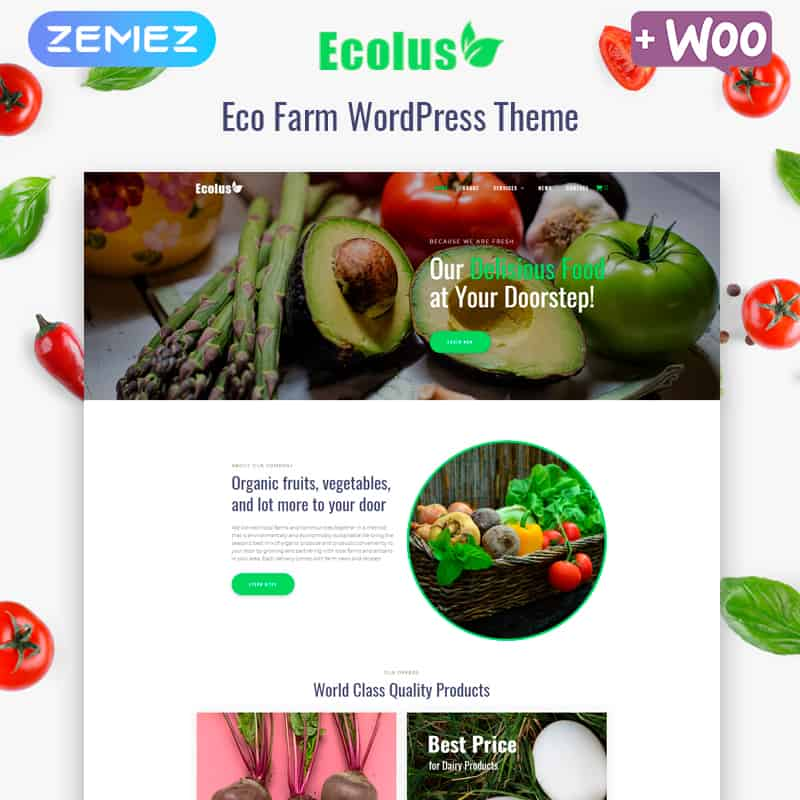 Ecolus - Organic Food Delivery ECommerce Modern Elementor WordPress Theme